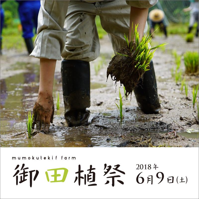mumokuteki farm 御田植祭
