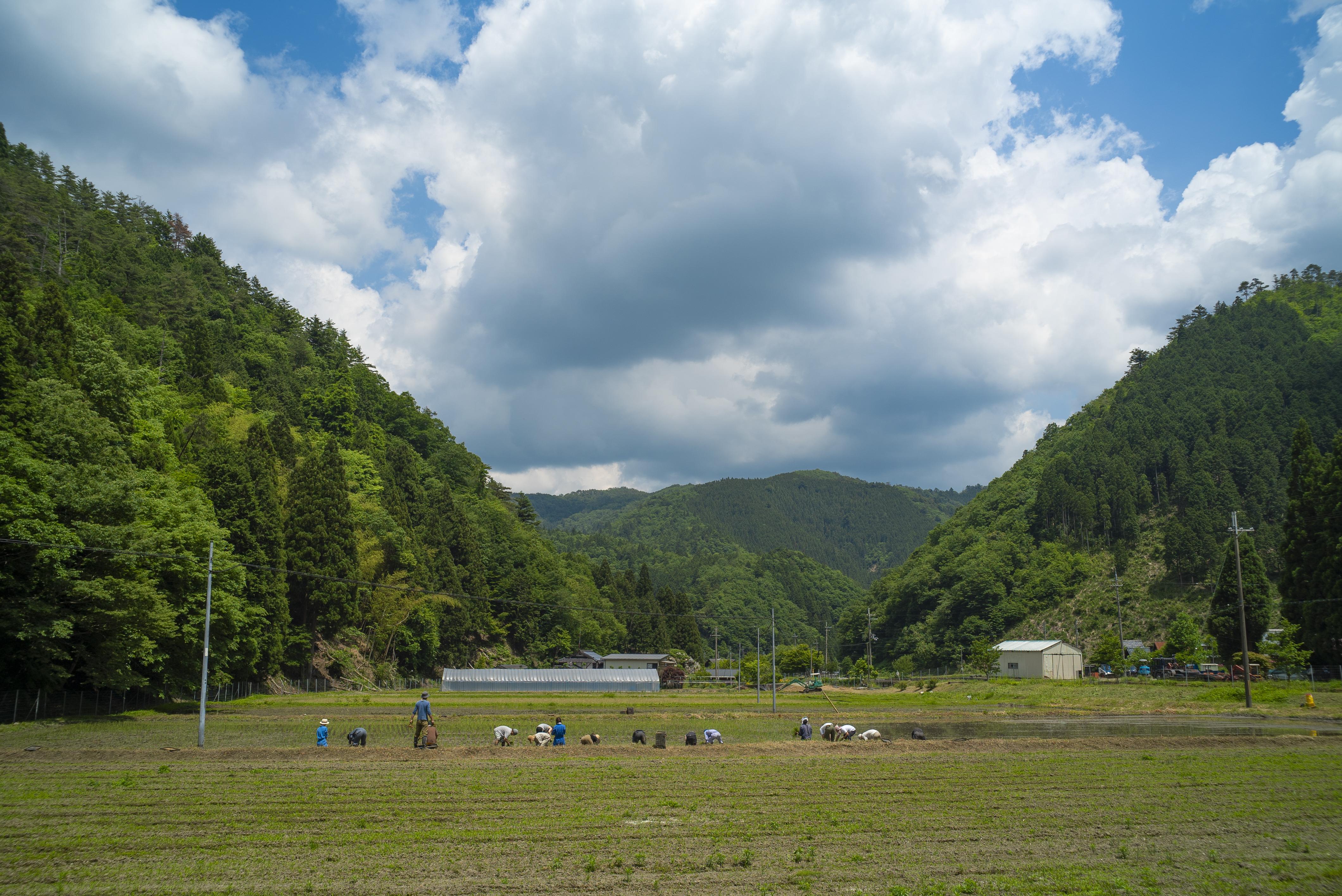 """mumokuteki farmの""""お田植え祭"""""""