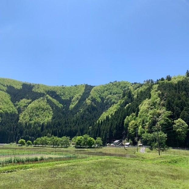 mumokuteki ファームでは、お米の苗づくりに取り掛かっています